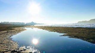 神奈川県立湘南海岸公園から見える海
