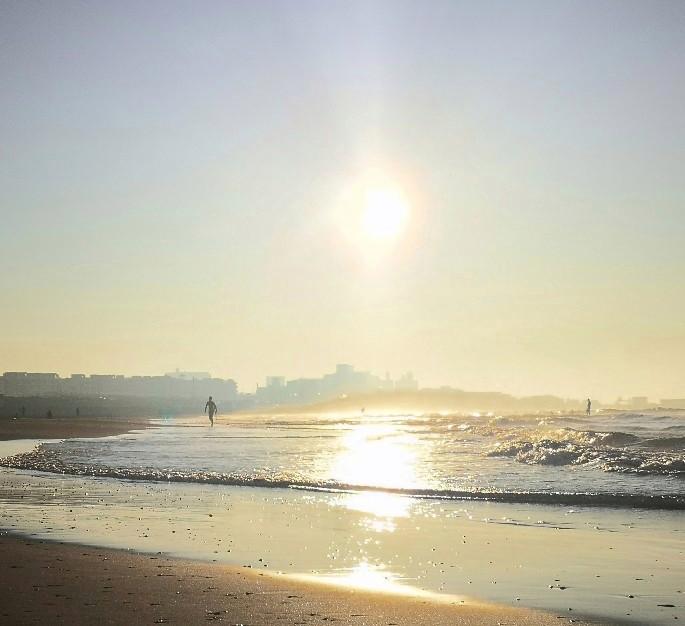 神奈川県立湘南海岸公園から見える朝の海