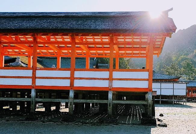 嚴島神社朝の風景