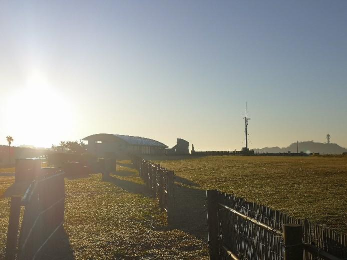 神奈川県立湘南海岸公園 芝生広場