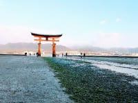 嚴島神社朝の大鳥居