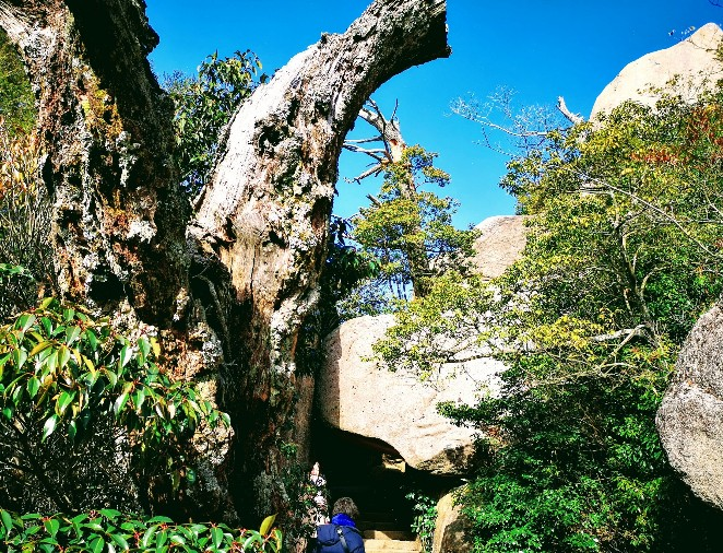 宮島弥山 くぐり岩