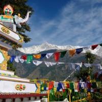 本国よりもチベットらしさが残る街!「幸福の谷ダラムサラ」へ