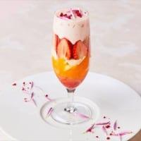 ゼルコヴァ 苺と日向夏のパフェ 甘酒のエスプーマ