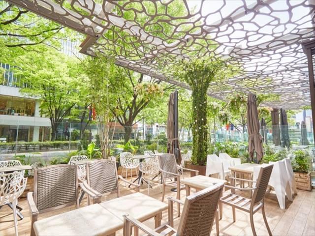 Cafe & Dining ZelkovA