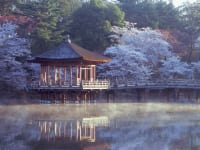 奈良公園・浮見堂