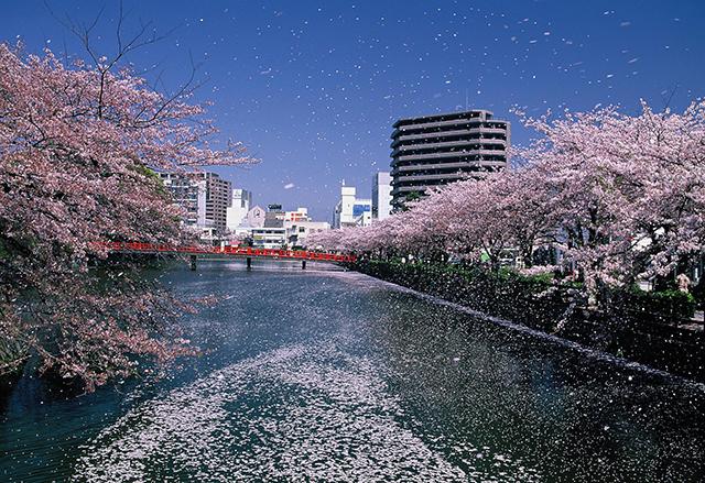 神奈川県・小田原城