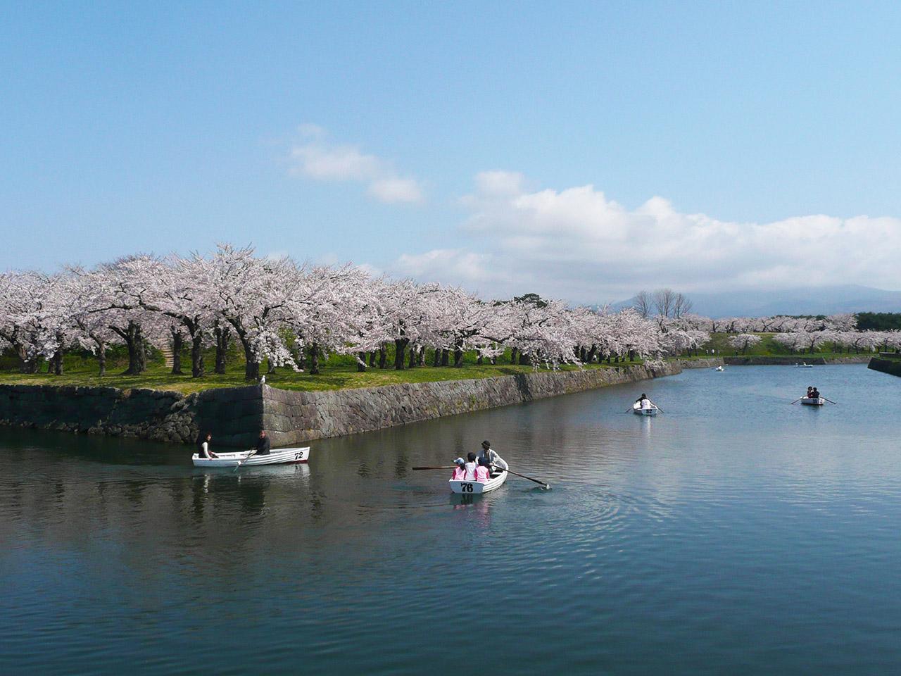 北海道函館市「五稜郭公園」