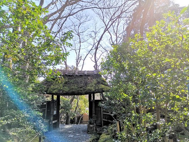 祇王寺 苔庭の入口