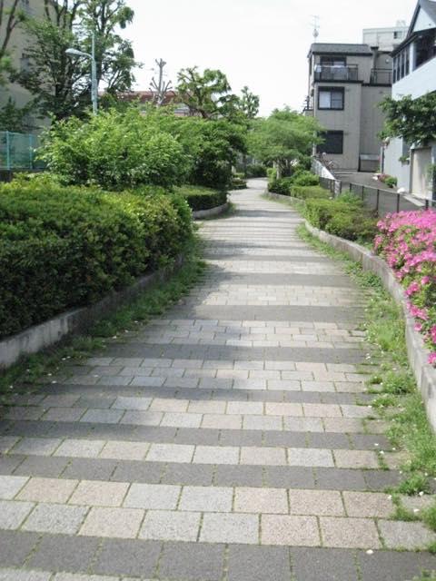 【都内】桜や新緑の季節に歩きたい目黒のプロムナード