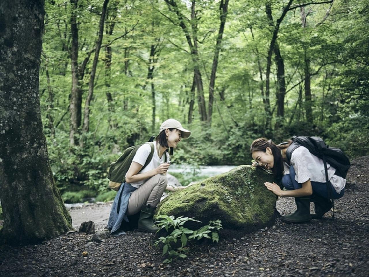 自然に囲まれて心と身体リフレッシュする女子旅なら【星野リゾート】