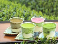 濃厚茶葉のティラミス食べ比べセット1