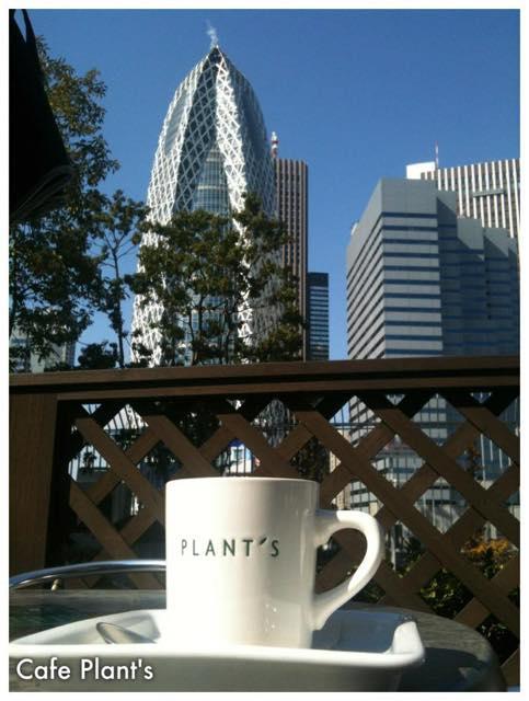 【日向ぼっこに最適】開放感あふれる都内の屋上カフェ5選