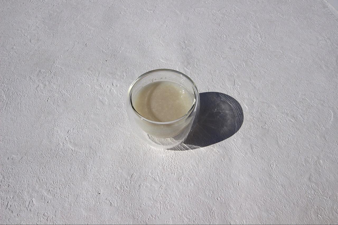 麹菌のイメージ