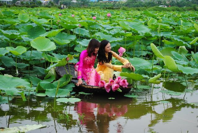 ベトナム・ハノイの蓮池