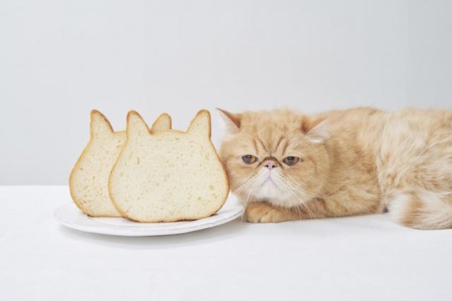 ねこねこ食パン プレーン