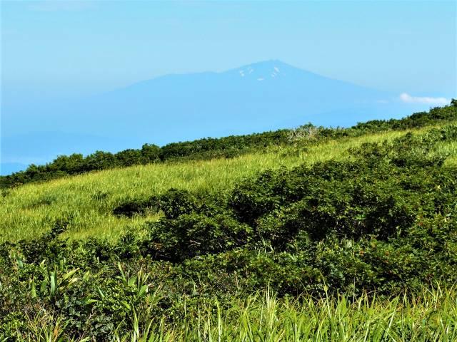 湿原越し鳥海山