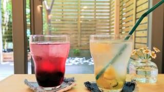 奈良オモテナシ食堂 ブルーベリー、オレンジとキウイのお酢ドリンク