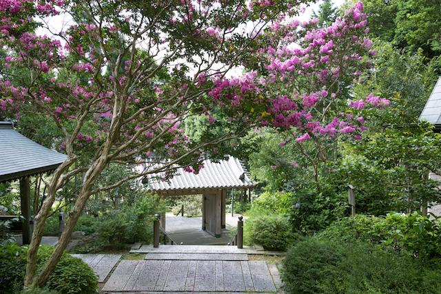 麻耶山天上寺1