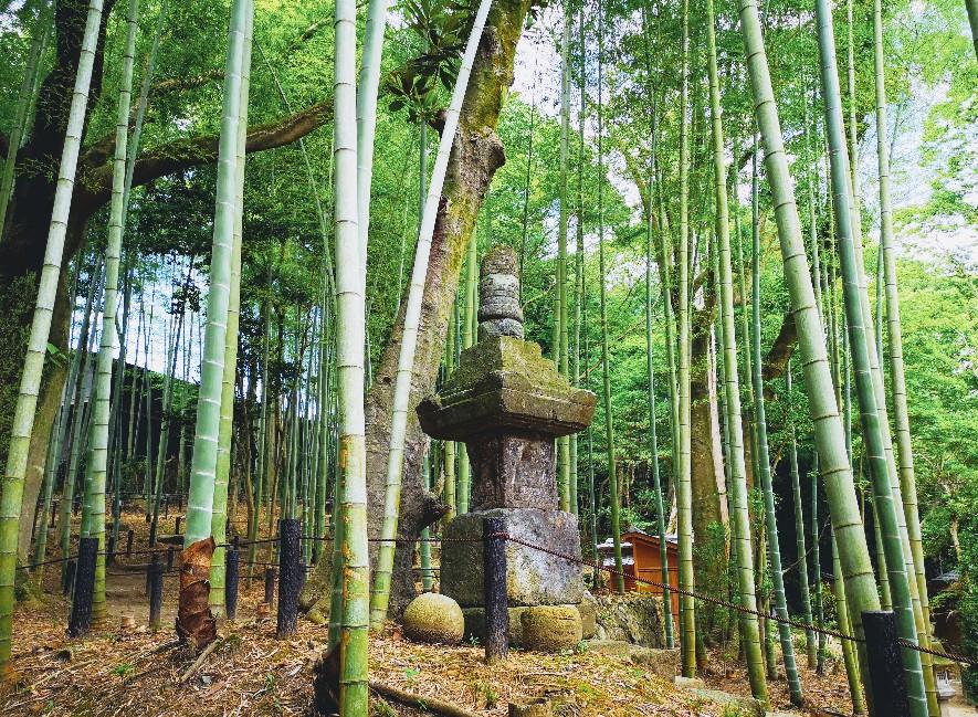 「瑜伽山園地 旧山口氏南都別邸庭園」竹林の灯籠