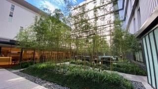 hotelkaie_garden