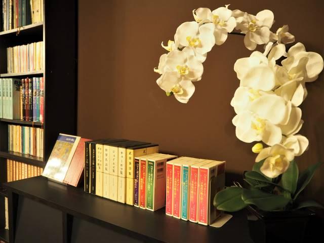 胡蝶蘭と本