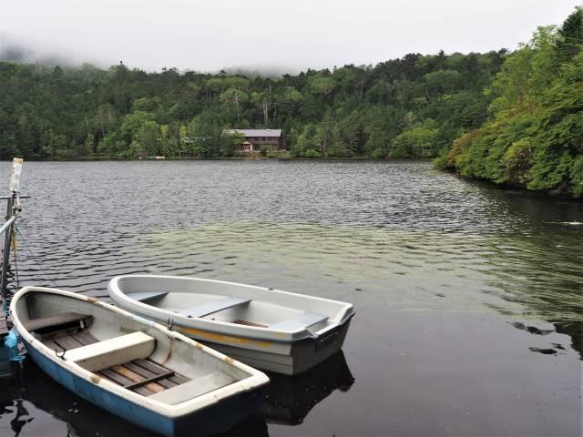 霧の白駒の池