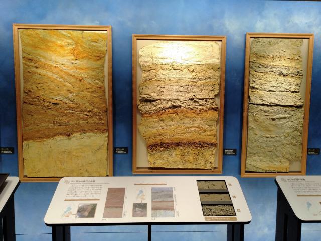 滋賀県立琵琶湖博物館A展示室