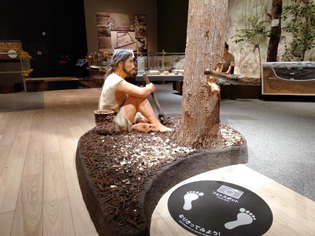 滋賀県立琵琶湖博物館B展示室2