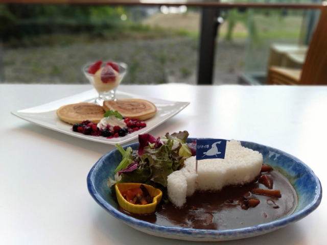 滋賀県立琵琶湖博物館レストラン