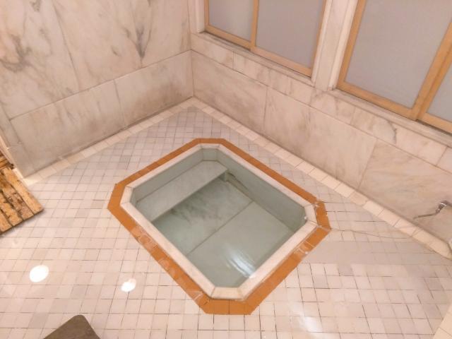 塔ノ沢一の湯本館温泉5