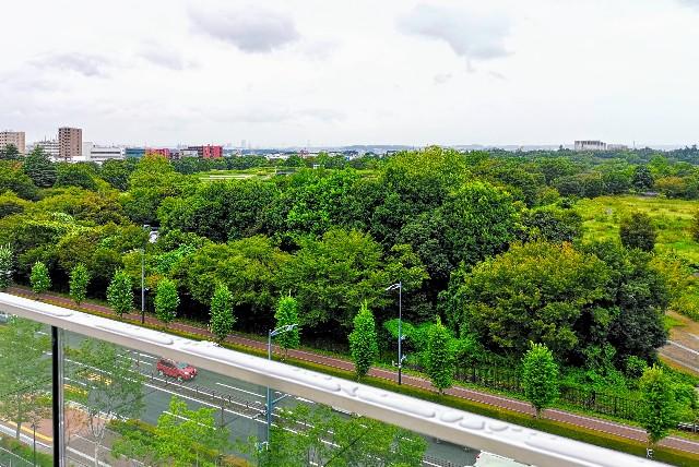 東京さんぽ・立川 グリーンスプリングスの立川ステージガーデンのスカイデッキから見える昭和記念公園