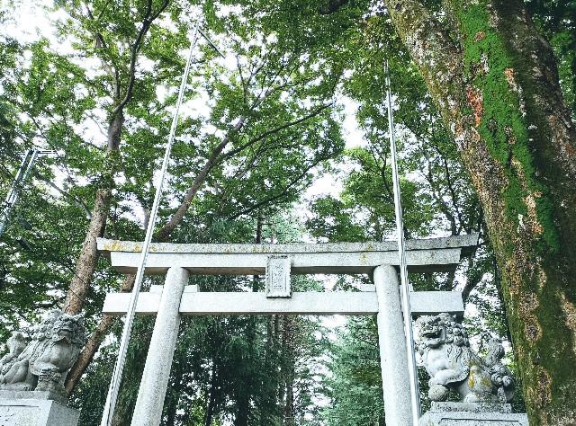 東京さんぽ・立川 諏訪神社