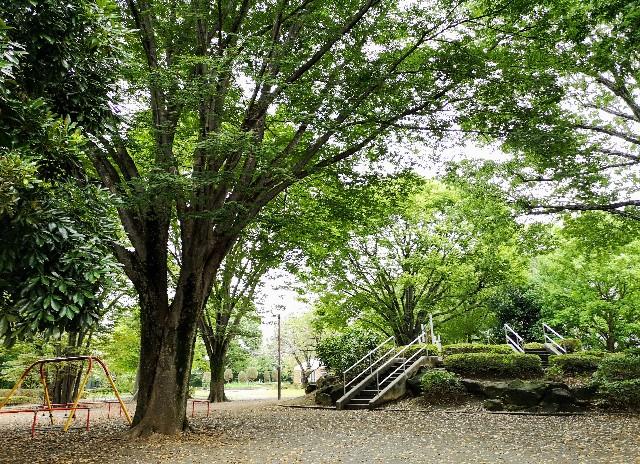 東京さんぽ・立川 諏訪の森公園
