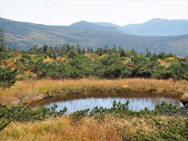 池塘と山々