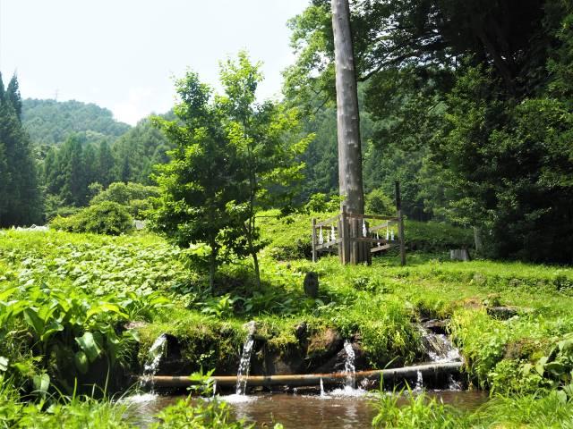湧水と三の柱