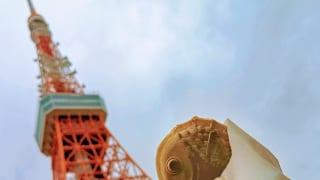 東京・神谷町「赤い月珈琲 東京」のたい焼きと東京タワー