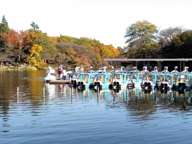 吉祥寺井の頭公園