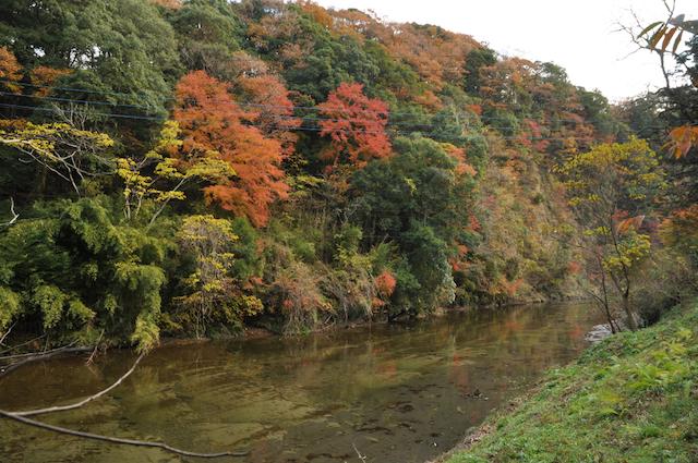 千葉県・養老渓谷