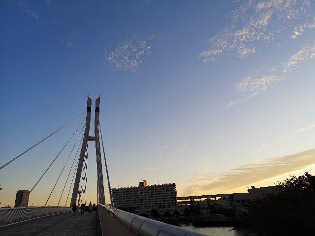 東京都・辰巳桜橋と朝の風景