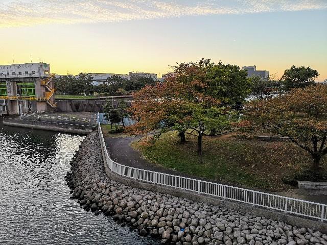 東京都・東雲水辺公園