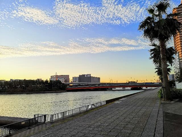 東京都・潮風の散歩道