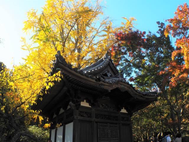旧天瑞寺寿覆堂と紅葉