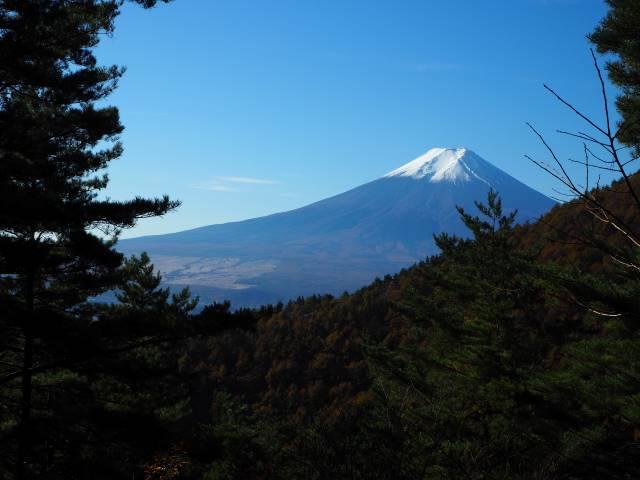富士山を仰ぐ