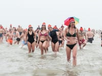 オランダの新年寒中水泳