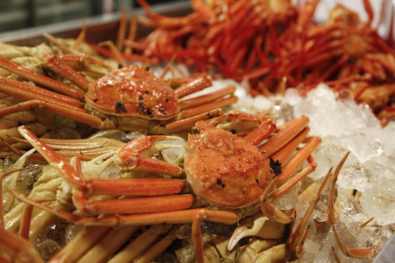 期間限定!松江の冬の風物詩「かに小屋」でカニの食べ比べを楽しむ旅【島根県】