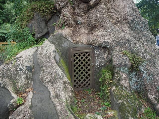 裏側の入り口