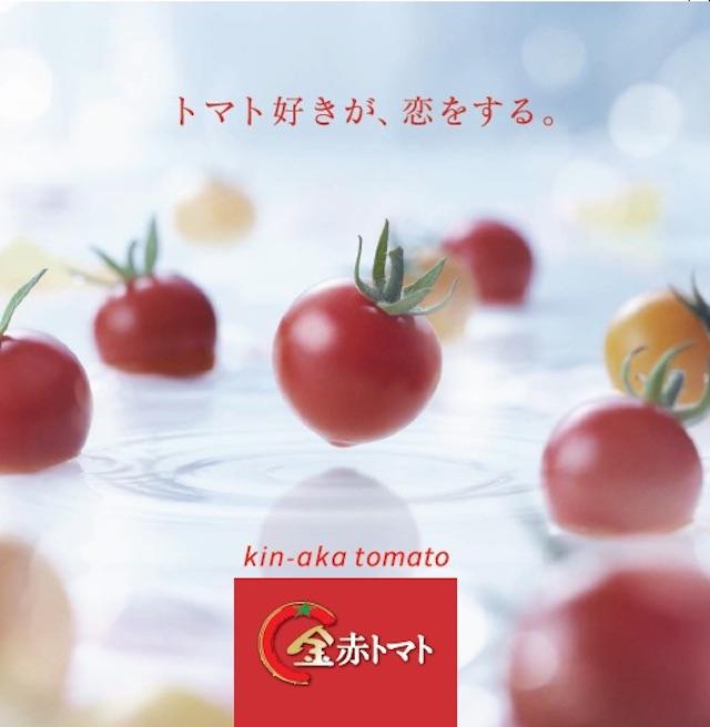 金赤トマトミニ