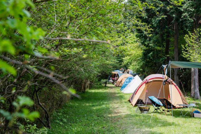 FUJI & SUN'21 キャンプ