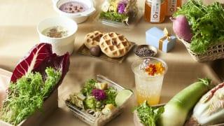 「GODIVA café Tokyo」×福井県 コラボレーションメニュー
